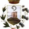 Comune di Rocca Susella